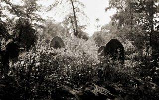 Gräber auf dem Johannisfriedhof